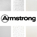 armstrong_cat